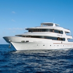 Vessel-Bow-Port-Carpe-Vita-Explorer-Maldives-Explorer-Ventures-Liveaboard-Diving