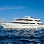 Vessel-Port-Carpe-Vita-Explorer-Maldives-Explorer-Ventures-Liveaboard-Diving