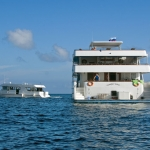 Vessel-Stern-Dhoni-Carpe-Vita-Explorer-Maldives-Explorer-Ventures-Liveaboard-Diving
