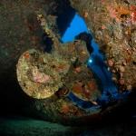 Propeller-Wreck-Carpe-Vita-Explorer-Maldives-Explorer-Ventures-Liveaboard-Diving