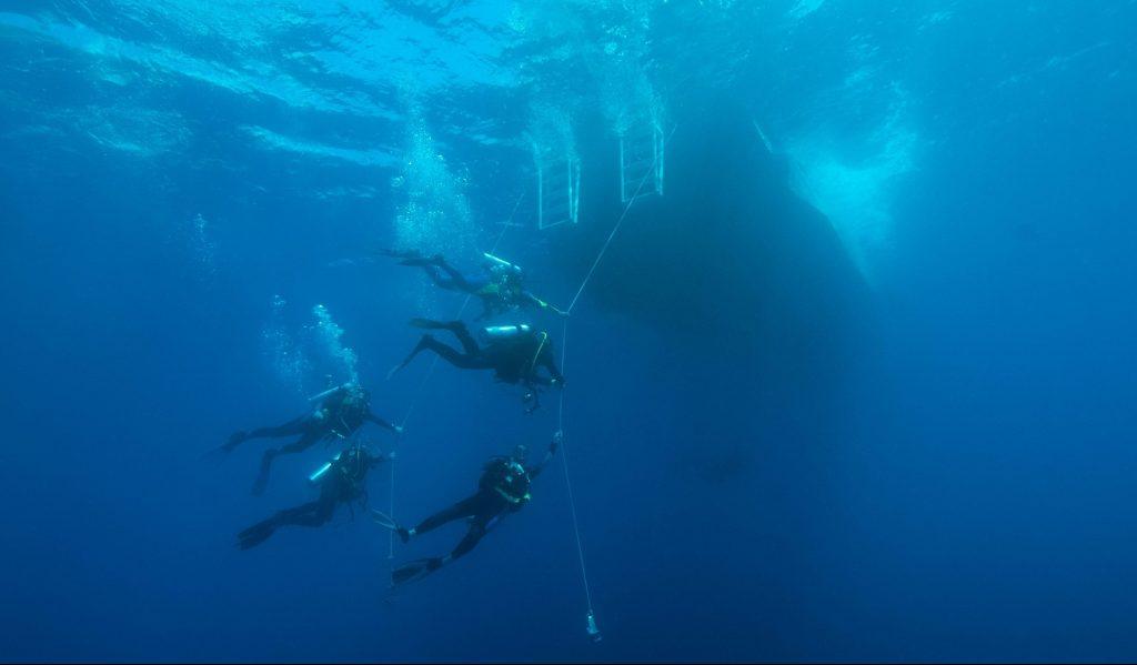 Divers on the hangline in Saba | Caribbean Explorer II